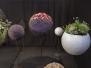 florale-meisterwerke-2013